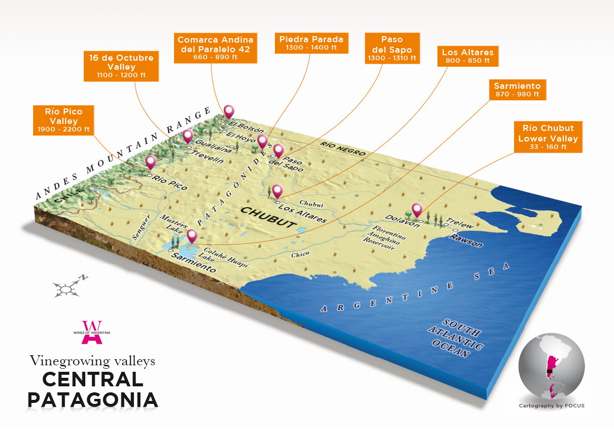 The Wine Regions : Argentina - Central Patagonia