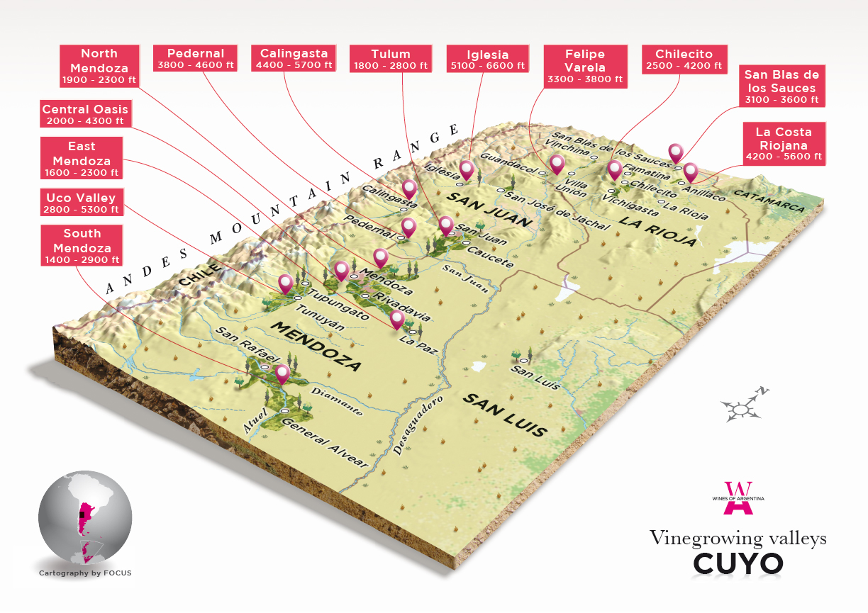The Wine Regions : Argentina - Cuyo